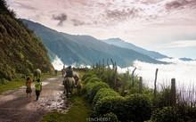Con đường từ thị trấn Bắc Yên lên Tà Xùa dài 13 km. Trên đường, bạn có thể ngắm được toàn cảnh thị trấn Bắc Yên ẩn hiện trong những đám mây lơ lửng vắt qua núi. Ảnh: Hai Yen Chu