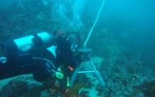 UNESCO lần đầu công bố báo cáo về khoa học đại dương trên thế giới