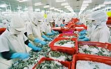 """Nhiều doanh nghiệp chế biến thủy sản """"kêu trời"""" vì quy định công bố phù hợp quy định ATTP"""