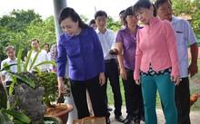 Bộ trưởng Bộ Y tế kiểm tra các vật dụng chứa nước ở nhà dân (Ảnh: Nguyên Mi)