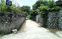 Một góc Trường Xuân