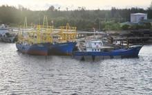 Quảng Trị bỏ ra hơn 3 triệu USD lắp đèn LED cho tàu đánh bắt xa bờ