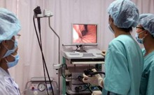 Tỷ lệ kháng thuốc kháng sinh điều trị vi khuẩn HP ở Việt Nam khá cao