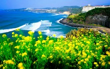 14 nơi không đi thì phí cả chuyến tham quan Hàn Quốc