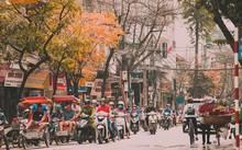 Giới trẻ Hà Nội tự hào với mùa thay lá đẹp chẳng kém Hàn Quốc