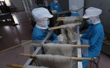 Công ty Cổ phần Minh Dương chuẩn bị hơn 150 tấn sản phẩm miến, bún khô, trị giá hơn 10,4 tỷ đồng phục vụ thị trường Tết. (Ảnh: Vũ Sinh/TTXVN)