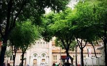 Đường Hàn Thuyên, nằm cạnh Nhà thờ Đức Bà và công viên 30/4 được đề xuất làm con đường âm nhạc. Ảnh: G.T.