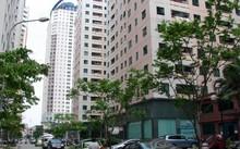Thị trường bất động sản là động lực cho hàng trăm ngành nghề khác nhau phát triển.