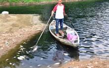 Người dân chèo ghe để đi vớt cá.