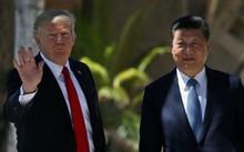 Tổng thống Mỹ và Chủ tịch Trung Quốc tại cuộc gặp gỡ song phương ở Palm Beach, Mỹ.