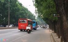 Hơn 1.300 cây xanh trên đường Phạm Văn Đồng sẽ bị chặt hạ, di chuyển. Ảnh: Văn Chương.