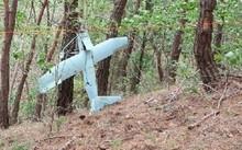 Chiếc UAV được tìm thấy trên vùng núi tỉnh Gangwon. Ảnh: Reuters.