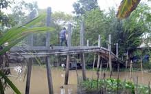 Cây cầu của gia đình bà Huê thấp hơn 0,5m so với những cây cầu khác