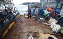 Tàu cá vỏ thép của ngư dân Bình Định hư hỏng nằm bờ.