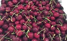 Loại trái cây được ưa thích này luôn loạn giá và loạn nguồn gốc, người tiêu dùng thông thường rất khó phân biệt được nguồn gốc. Ảnh: H. Thảo.
