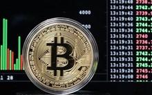 Giá Bitcoin đã tăng 40% trong tháng này. Ảnh: AFP