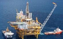 Thanh tra đã tiến hành thanh tra cả đơn vị khoan dầu khí.