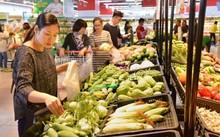 Mục sở thị mô hình liên kết nâng chất nông sản Việt