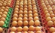 Việt Nam sẽ nhập khẩu trứng và muối từ tháng 4