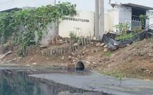 Nhiều xưởng công nghiệp vẫn xả thải trực tiếp ra hệ thống mương tiêu tại xã Di Trạch, huyện Hoài Đức.