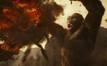 Quái vật Kong to lớn nhất trên màn ảnh từ trước tới nay
