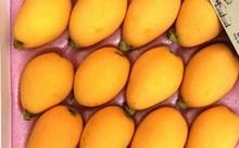 Biwa có vị ngọt mát, thơm được cửa hàng đóng hộp 500gram (12 trái).