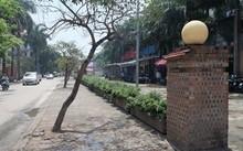 Chủ tịch Hà Nội yêu cầu kiểm tra việc 'xẻ thịt' 6.000 mét vuông đất công