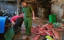 Hơn 2 tấn thịt bê, bò không rõ nguồn gốc bị phát hiện.