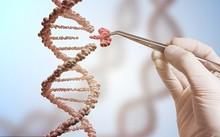 Kết quả nghiên cứu mới đã mang đến niềm hi vọng chữa khỏi căn bệnh thế kỷ. Ảnh: Shutterstock/vchal.