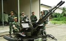 Một khẩu pháo Giant Bow của quân đội Indonesia. Ảnh: Military