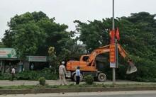 Xe cẩu dọn dẹp cây cối đảm bảo an toàn lưới điện và hành lang an toàn giao thông ở huyện Anh Sơn.