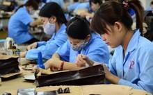 Năng suất lao động của Nhật Bản cao gấp 39 lần của Việt Nam, Singapore cao gấp 26 lần- Ảnh minh họa