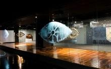 """Khung cửa sổ trưng bày tác phẩm """"Ngụ ngôn vàng"""" của nghệ sĩ Truc-Anh, khách tham quan sẽ như bị thôi miên khi trực tiếp trải nghiệm sự kết hợp giữa âm thanh, sắp đặt và video-art."""