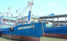 Đình chỉ sản xuất hai doanh nghiệp đóng tàu.