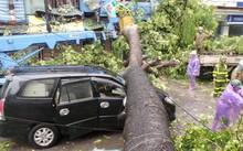 Khi có hiện tượng mưa giông người dân cần hạn chế di chuyển ra đường.