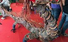 Rồng nấm được kết dính bởi hơn 40kg nấm lim xanh