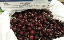 Người dùng có thể quét mã vạch trên bao bì sản phẩm để tìm hiểu nguồn gốc của cherry.