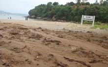 Khối lượng bùn đấy lớn đổ ra biển, khiến khu vực này bị ô nhiễm.