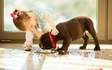 Tiếp xúc với vi khuẩn giúp trẻ khỏe mạnh hơn. Ảnh: SD.