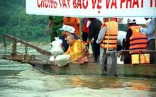 Các đại biểu thả cá tái tạo nguồn lợi thủy sản trên sông Lô.