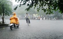 Thời tiết ngày 30/9: Bắc Bộ có mưa rào và dông vào sáng sớm