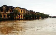 TP Hội An xảy ra ngập lụt nghiêm trọng. Ảnh: Báo Quảng Nam