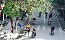 Bắc Bộ ấm trở lại, Nam Trung Bộ tiếp tục có nguy cơ lũ quét