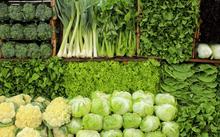 Các loại rau lá xanh là tác nhân làm sạch gan tự nhiên rất mạnh mẽ