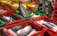Histamin có nhiều trong cá biển kém tươi.