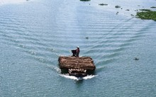 Ghe buôn tràm trên sông Vàm Cỏ Tây