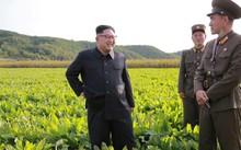 Nga cung cấp kết nối internet mới cho Bắc Triều Tiên