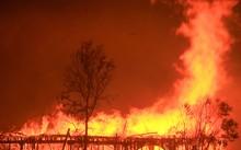 Toàn cảnh sự tàn phá nặng nề của vụ cháy rừng lịch sử tại Mỹ