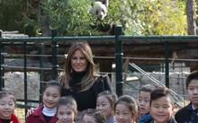 Đệ nhất phu nhân Mỹ thích thú với gấu trúc Trung Quốc