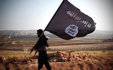 Khoảng 3.000 chiến binh IS vẫn đang 'bám trụ' tại Iraq và Syria